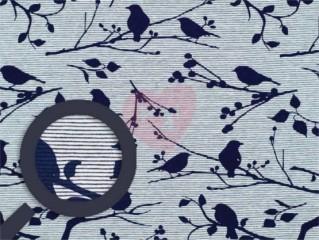 úplet ptáčci modří