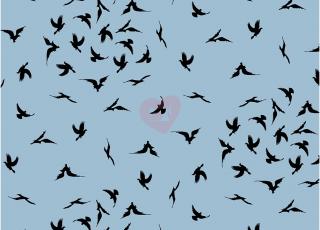 Úplet avalana ptáci na modrém podkladu 20-022
