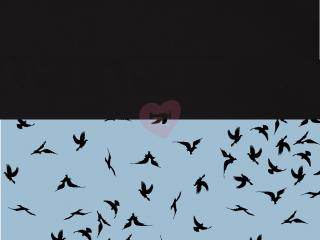 avalana úplet černí ptáci na modré
